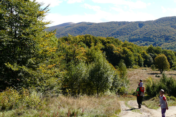 Zejście na Przełęcz Wyżnią