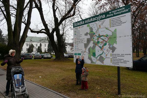 Rezerwat przyrody Stawy Raszyńskie.