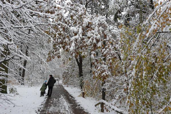 Jesień i zima zarazem.