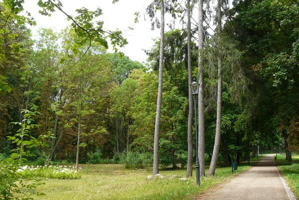 Ogród w stylu angielskim.