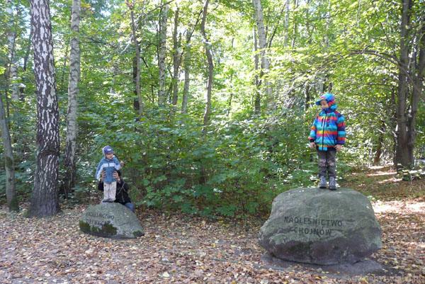 Skoki z kamieni to świetna atrakcja na koniec.