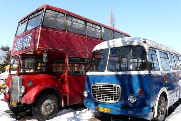 Który model autobusu wybrać...