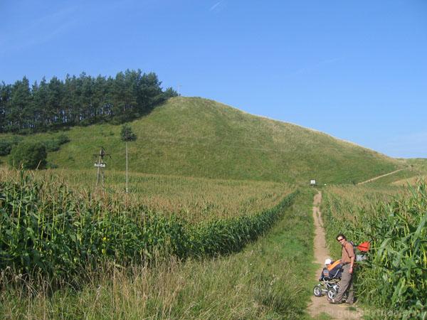 Góra Cisowa (258 m.n.p.m.)