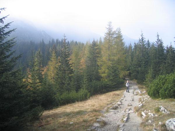 Przełęcz Białego.