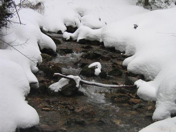 Zimowe impresje