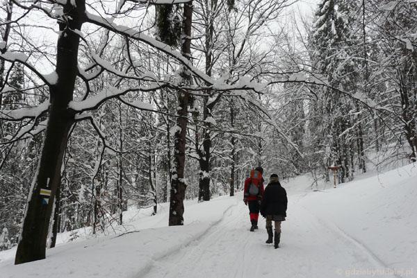 Na Przełęcz Karkoszczonka.