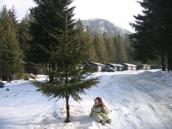 Tymuś na śnieżnym spacerku.