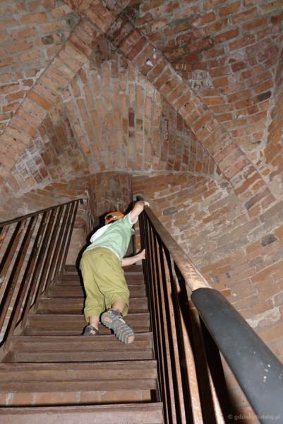 Na wieżę zamku Joannitów.