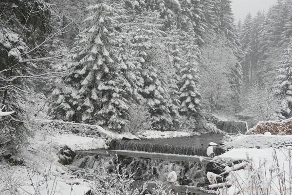 W górę Potoku Sopotniańskiego.