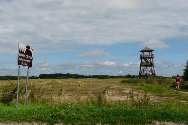 MRU - wieża widokowa.