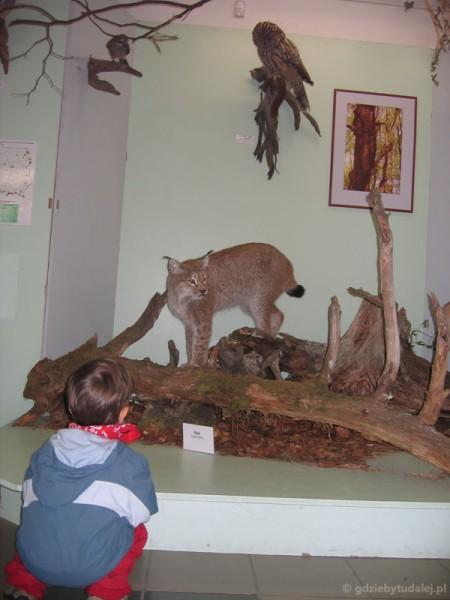 Muzeum RPN.