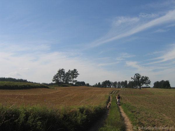 Okolice Krasnego - popołudniowy spacer