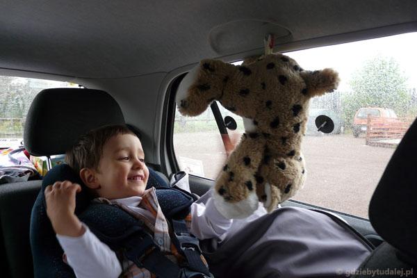 Po drodze - Pan Czekoladka jak nietoperz.