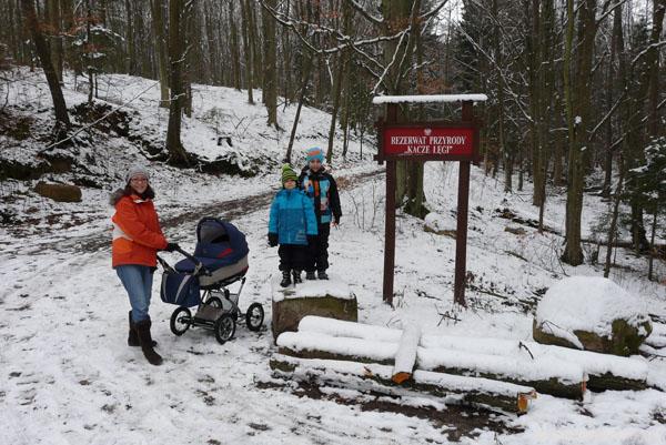 Rezerwat Kacze Łęgi w Trójmiejskim Parku Krajobrazowym.