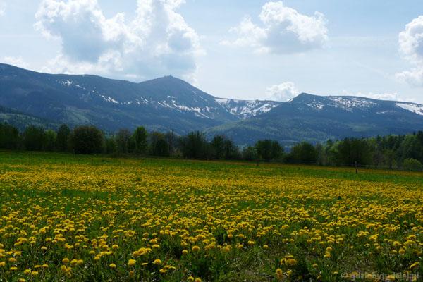 Wiosenne Karkonosze z okolic Kowar.