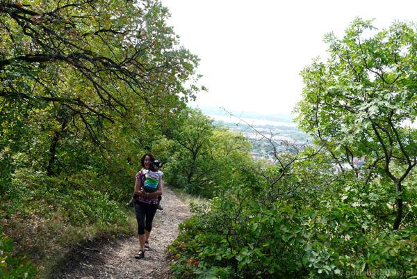 Wejście na Wzgórze Jokaiego w Balatonfured.