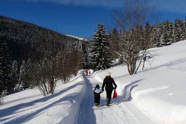 Z Peca pod Snežkou do Hostinca Jeleni Louky.
