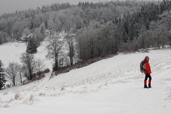 Bacówka nad Wierchomlą.