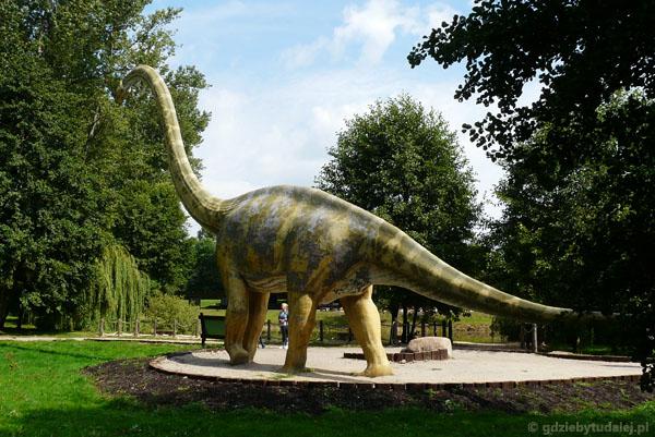 Mamenchizaur w całej okazałości.