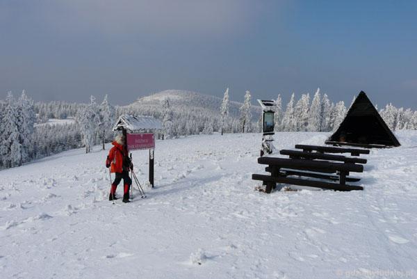 Hala pod Śnieżnikiem.