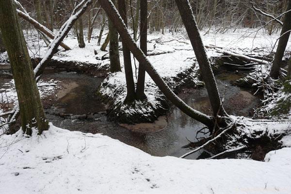 Malowniczy potok Źródło Marii.