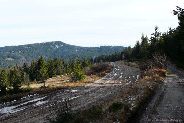 Błotnisty szlak na Turbacz.