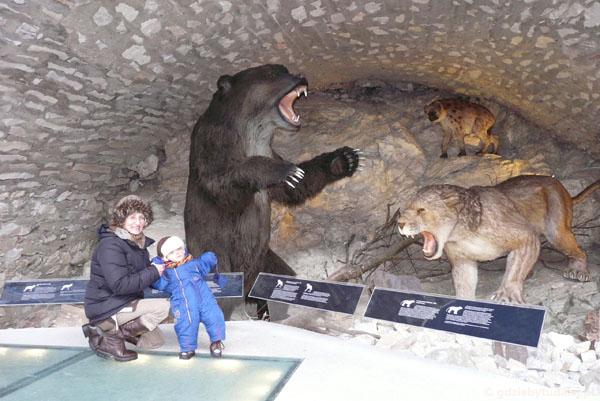 Jaskinia Niedźwiedzia, Kletno.