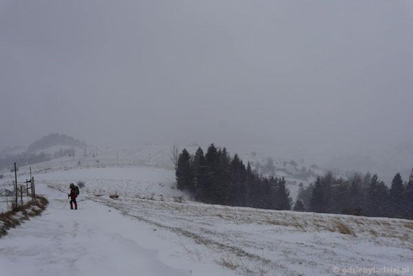 Powrót do Łomnicy żółtym szlakiem.