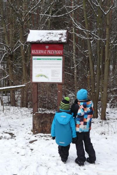 Chłopcy zgłębiają informacje nt rezerwatu.