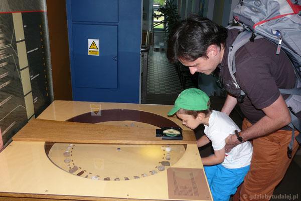 Pod szkłem powiększającym można obejrzeć skamieniałości.