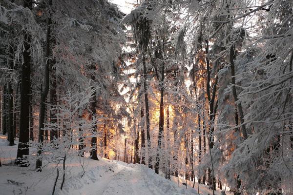 W górach Kaczawskich (Skopiec- Komarno). Ale pięknie...