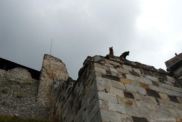 Witają nas strażnicy zamku.