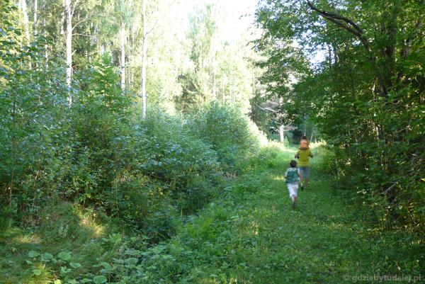 Hej, ho, hej, ho, do lasu by się szło...