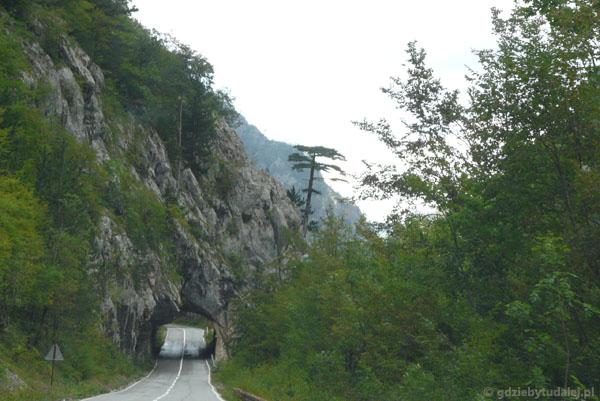 Malowniczy tunel.