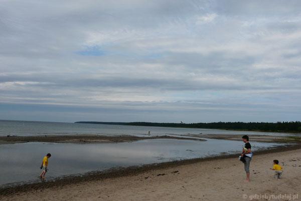 Plaża w Vösu.