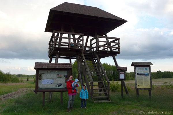 Wieża widokowa na Bagno Staw.
