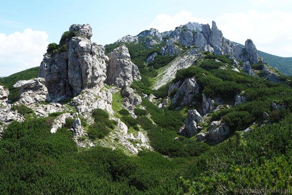 Wkraczamy w dolomitowy park skalny.