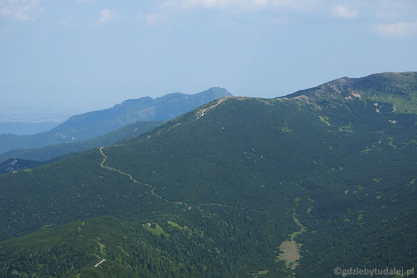 Widok na Przełęcz Palenica.