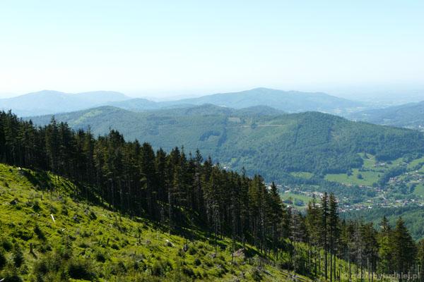 Widok na szczyty Beskidu Śląskiego.