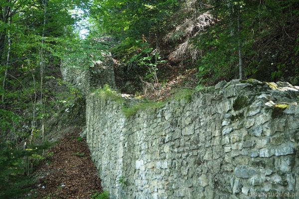 Ruiny zamku pienińskiego (XIII w.).
