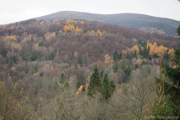 Bieszczadzka panorama z Przysłupu Caryńskiego.