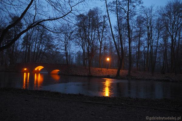 Młochowski park nocą