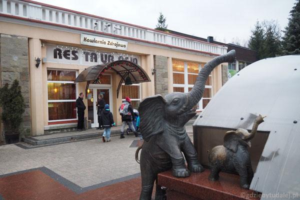 Sympatyczna fontanna ze słoniami