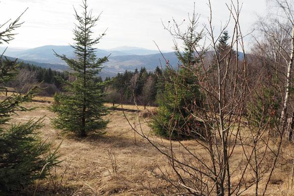 Widok na pasmo Babiej Góry