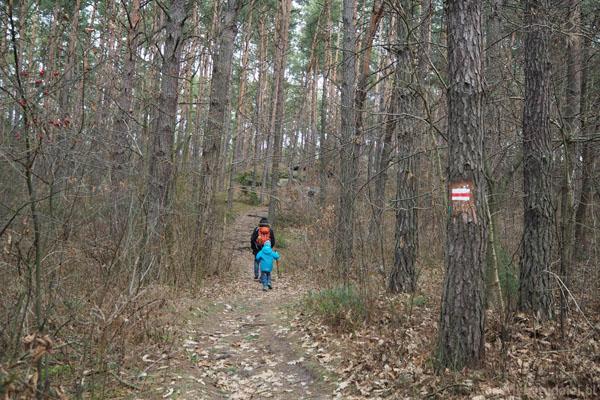 Rezerwat Skały w Krynkach. Do skał prowadzi czerwony szlak.