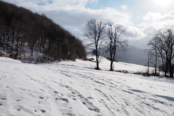 Po lewej stoki góry Jawor.