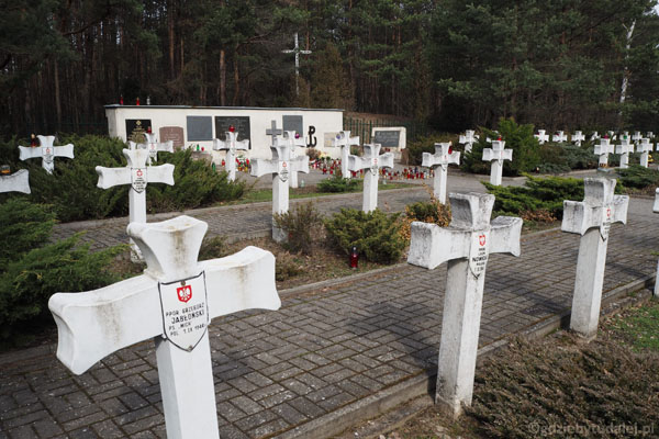 Na cmentarzu jest pochowanych 54 żołnierzy AK, zmarłych w 1944 r.