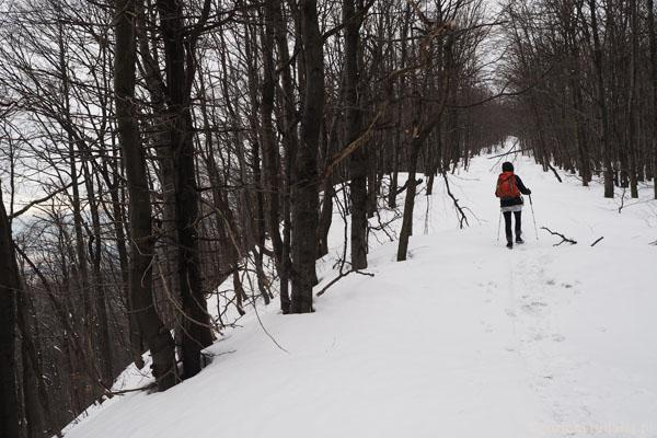 Ścieżka grzbietowa wiedzie prosto na szczyt Lackowej.