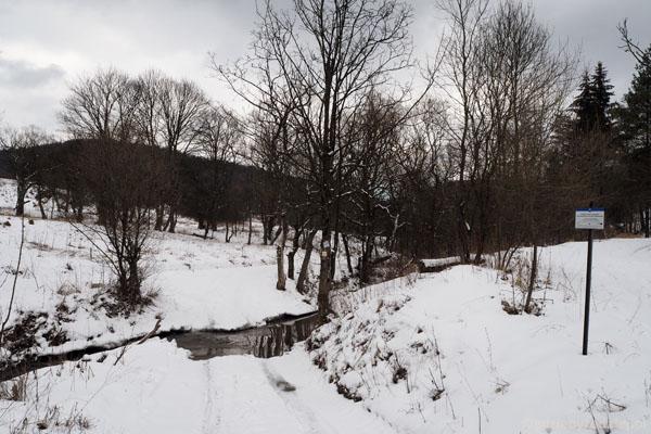 Wkraczamy na teren nieistniejącej wsi Regietów Wyżny.