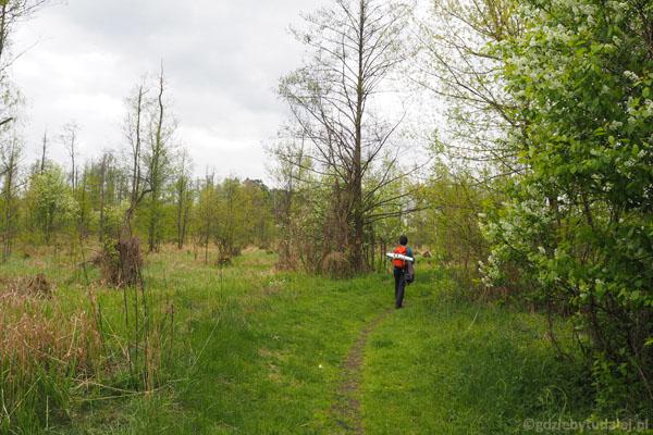 Wkraczamy w obszar Ochrony Ścisłej Żurawiowe. Niegdyś był tu dorodny las olszowy.